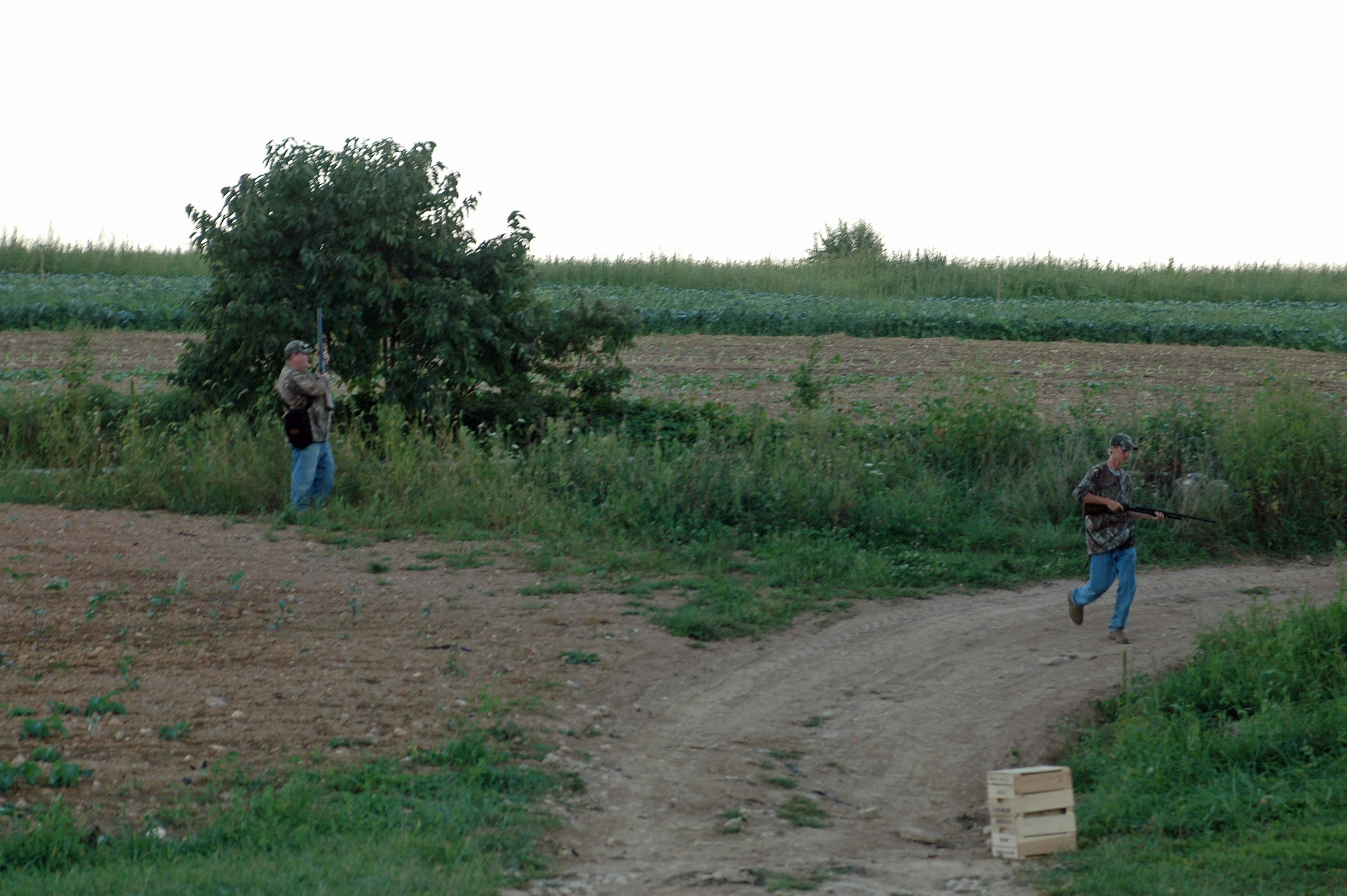 Florida public dove hunting fields the best dove 2017 for Illinois fishing regulations 2017